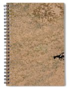 Horse On Canyon Floor Spiral Notebook
