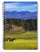 Horse Play Spiral Notebook