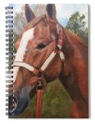 Red Dun Horse - Reds Done Dancin By Marilyn Nolan-johnson Spiral Notebook