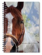 Horse Portrait Closeup Spiral Notebook