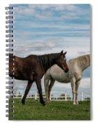 Horses #2 Spiral Notebook