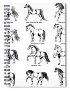 Horse Sketch Composite Spiral Notebook