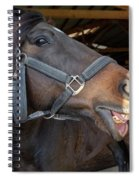Horse Snack  Spiral Notebook