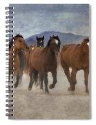 Horses-03 Spiral Notebook