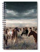 Horses Forever Spiral Notebook