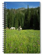 Horses Getting A Break Spiral Notebook