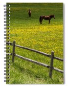 Horses In A Field Spiral Notebook