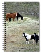 Horses In The Highlands Spiral Notebook