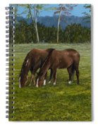 Horses Of Romance Spiral Notebook
