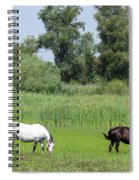 Horses On Pasture Nature Farm Scene Spiral Notebook