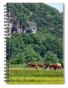 Horses On The Rubideaux Spiral Notebook