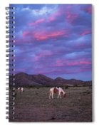 Horses With New Mexico Sunset Spiral Notebook