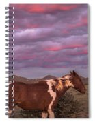 Horses With Southwest Sunset Spiral Notebook