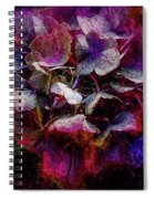 Colorful Hortensia Closeup Spiral Notebook