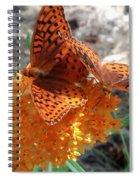 Horton Butterflies Spiral Notebook