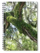 Host Tree Spiral Notebook