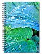 Hosta After The Rain Spiral Notebook
