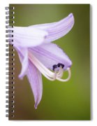 Hosta Spiral Notebook
