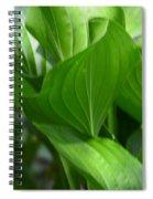 Hosta Waves Spiral Notebook