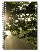 Hot Golden Mists Of Summer Spiral Notebook