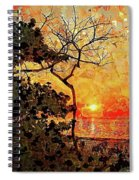 Hot Night In The Tropics Spiral Notebook