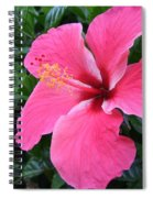 Hot Pink Hibiscus 1 Spiral Notebook