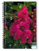 Hot Pink Jacaranda Spiral Notebook