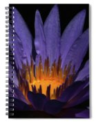 Hot Purple Water Lily Spiral Notebook
