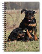 Hot Rot Spiral Notebook