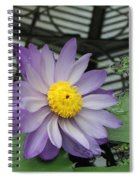 Hothouse Waterlily Spiral Notebook