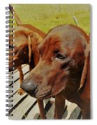 Hounds Spiral Notebook