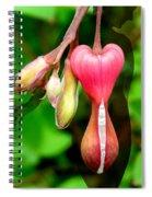 Hourglass Spiral Notebook