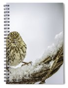 House Finch Snow Is Coming Spiral Notebook