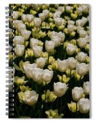 House Of White Spiral Notebook
