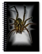 House Spider Spiral Notebook