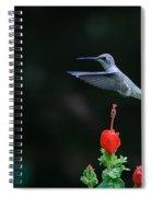Hover Spiral Notebook