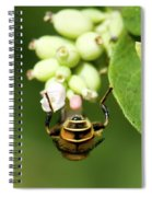 Hoverfly Spiral Notebook