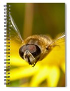 Hoverfly In Flight Spiral Notebook