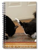 How Cat Fights Start Spiral Notebook