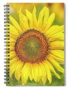 How Do You Dew, Sunflower Spiral Notebook