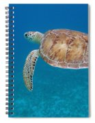 How Green It Is Spiral Notebook