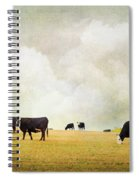 How Now Black Cow Spiral Notebook