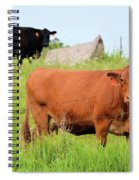 How Now Brown Cow Spiral Notebook