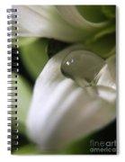 How Still The Petal Spiral Notebook