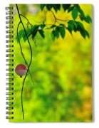 How To Catch A Tree Spiral Notebook