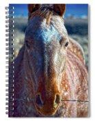 Howdy Neighbor  Spiral Notebook
