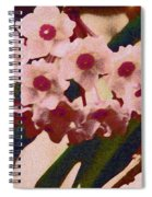 Hoya 2 Spiral Notebook