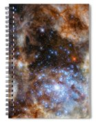 Hubble Finds Massive Stars Spiral Notebook