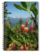 Huckleberry Flowers Atop Huckleberry Mountain In Glacier National Park Montana Spiral Notebook