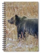 Huck's Snaggletooth Profile Spiral Notebook